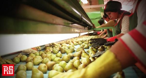 Derechos del trabajador migrante y su familia en Chile