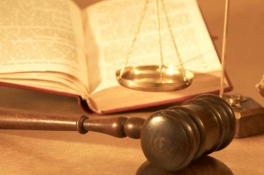 Acceso de Migrantes a la Justicia Penal: Balance de víctimas e imputados