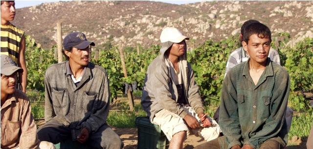 Los Migrantes en Chile: ayer, hoy y mañana