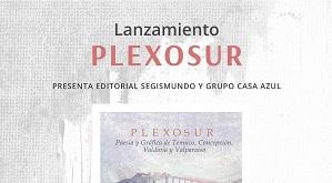 La poeta Karina García, nos contó sobre el lanzamiento del libro Plexo Sur