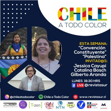 Chile a Todo Color: Elección de Constituyentes